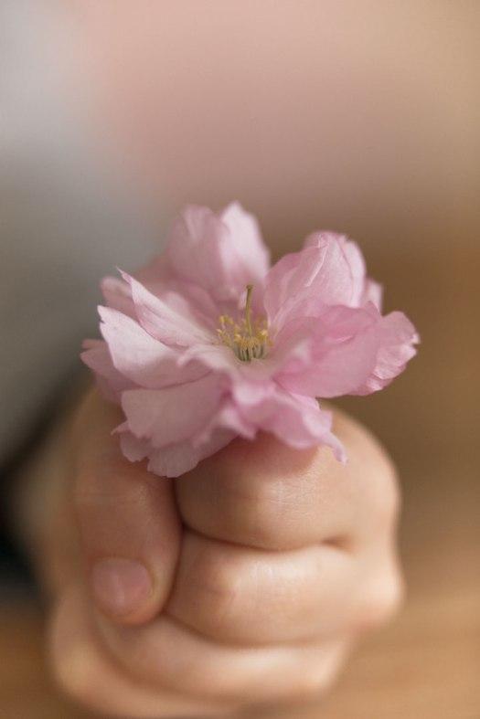 FlowerPowerEditoIssue5